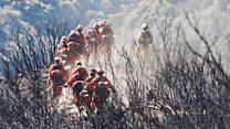 راز دانش: منشأ آتشسوزیهای کالیفرنیا چیست؟