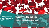 Haemophilia breakthrough