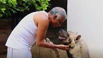 इंसान और खूंखार जानवरों के बीच ऐसा है प्यार का रिश्ता