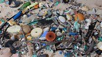 चीन ने लगाया कचरे पर बैन