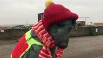 Dog statue given woollen makeover