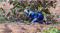 Attaque en Casamance : le témoignage d'un journaliste