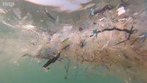 Inikah solusi mengatasi sampah plastik?