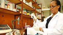 تميز نسائي في البحوث والعلوم