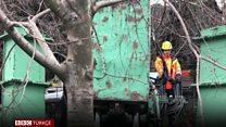 Maçka Demokrasi Parkı'nda ağaç sökümlerine tepki