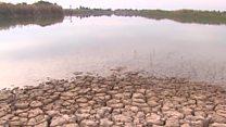 جفاف نهر دجلة قد يصل قريبا إلى بغداد