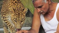 The man who runs an 'orphanage' for wild animals