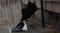 I repair umbrellas to save the world'