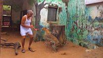 رجل يتقاسم منزله مع الفهود والضباع