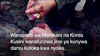 Wanajeshi wanaojifunza jinsi ya kunywa damu ya nyoka na kisha kuwala