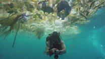 バリ島近くの海に大量のプラスチックごみ 英ダイバー撮影