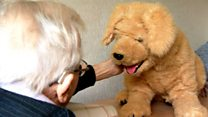Robotic dog helping elderly