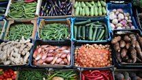 كيف نشجع الأطفال على تناول الخضروات؟