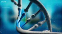 خزن معلوماتك في جيناتك