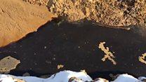 """Ртуть, мышьяк и не только: куда утекают отходы с свалки """"Ядрово""""?"""
