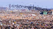 Russian toxic landfill protest