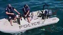 जब व्हेल ने पुलिसवालों को भागने पर किया मजबूर