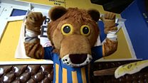 Shrewsbury make final plans for Wembley