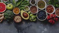 En besleyici 20 bitkisel gıda