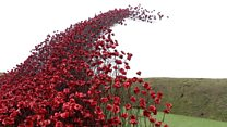 Poppies sculpture comes to Hampshire