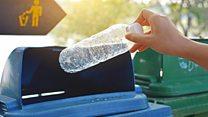 प्लास्टिक खाऊन नष्ट करता येईल का?