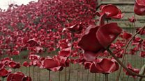 WW1 poppies sculpture on display at cathedral