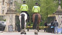Police horses prepare for royal wedding