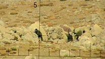 Syria ambush footage investigated