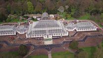 Kew Gardens reopens Victorian glasshouse