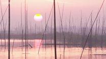 ฟาร์มโซลาร์ลอยน้ำใหญ่ที่สุดในโลกของจีน