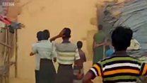 为什么大象会踩踏罗兴亚难民营