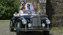 Jack Russells in 'royal wedding'
