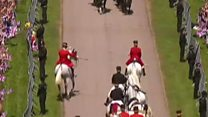 Royal wedding viewers spot 'naughty' horse