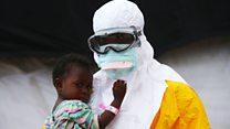 इबोला जगातून संपणार नाही कारण...