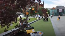 Trees trail for Manchester attack tributes