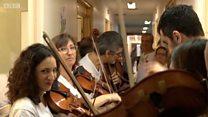 A orquestra de voluntários que leva música a pacientes terminais