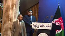 پښتو د افغانستان رسمي ژبه، لږ دولتي ویونکي لري