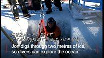 南極が「職場」 英国人ガイドの日常