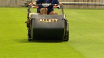 Mowers set for World Cup pitch invasion