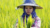 မြန်မာ့အရေးကမ္ဘာ့အရေး အစီအစဉ်