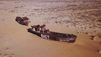 """""""Plantamos millones árboles para evitar que los tóxicos se propaguen"""": el ambicioso proyecto que quiere devolver la vida al mar de Aral"""