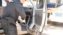 Police officer pulls cobra from minivan