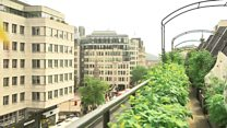 The rooftop garden in the heart of central London