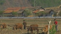 Across the fence: Watching North Korea from China