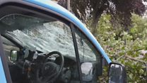 Lucky escape for driver hit by falling tree