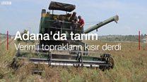 Adana'da çiftçiler: Perişan durumdayız