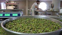 Gaziantep'in 'tuzlu' tatlısı: Fıstıklı Baklava