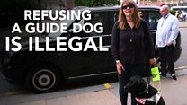 Getting A Taxi With A Guide Dog | Guide Dog Life