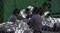 أصوات بكاء أطفال المهاجرين بأمريكا