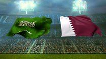 Saudis deny pirating World Cup TV rights